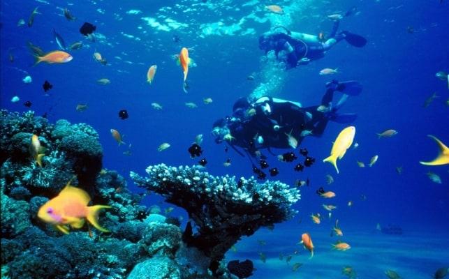 scuba-diving-cebu