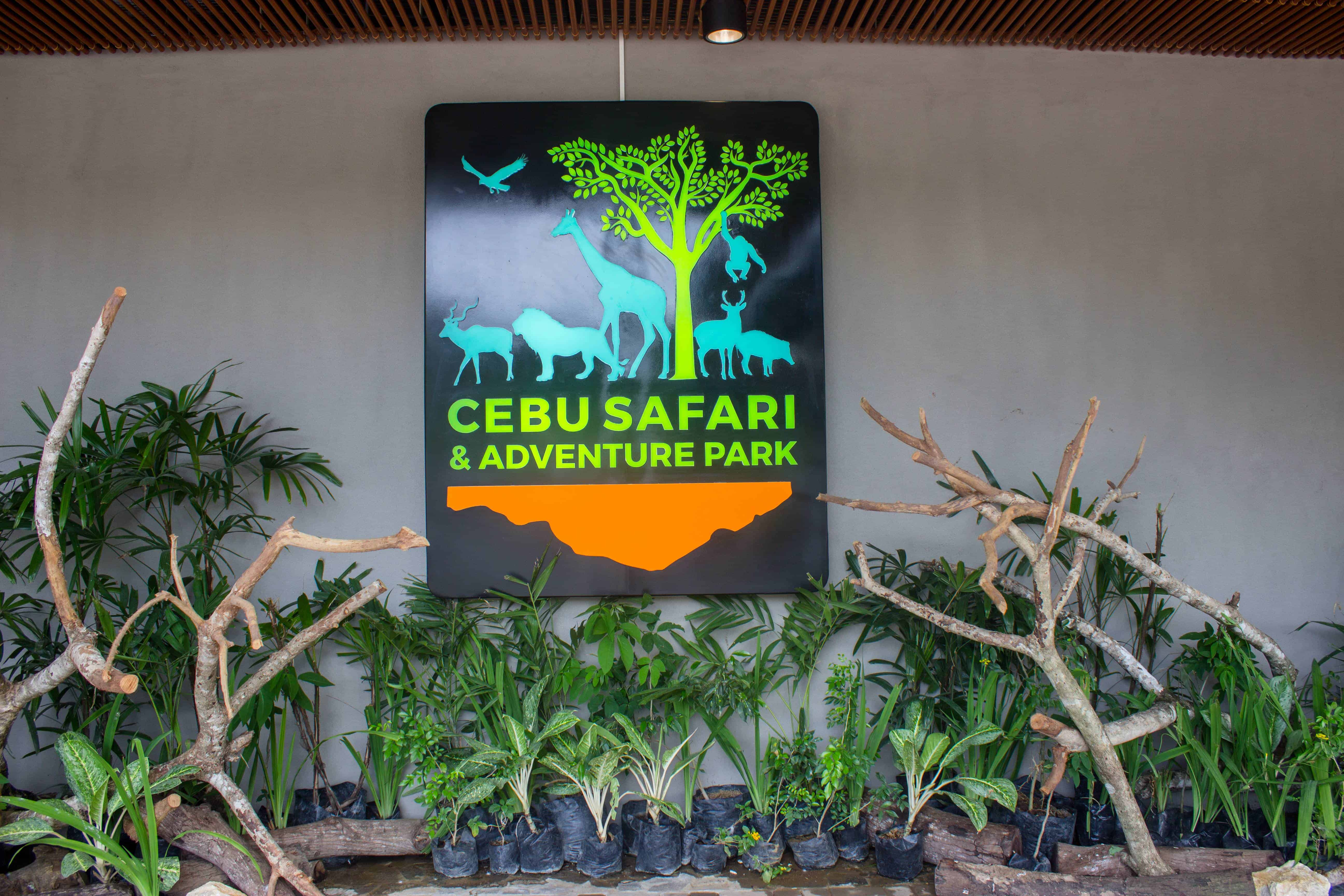 cebu safari (6)