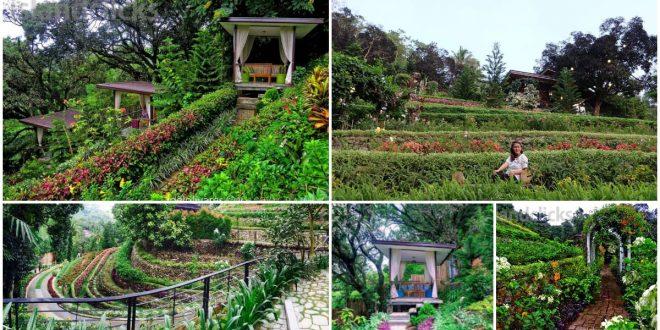 Terrazas De Flores Botanical Garden In Busay Cebu Sugbo