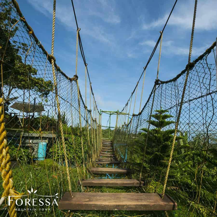 Foressa Trails 2