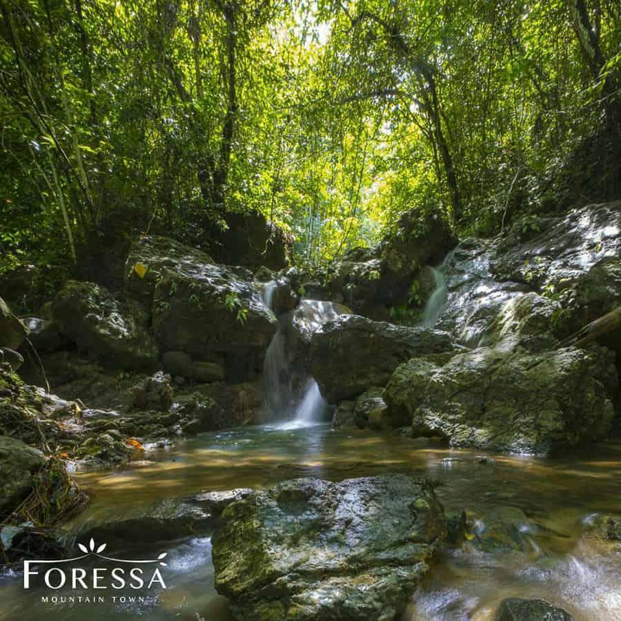 Foressa Trails Falls