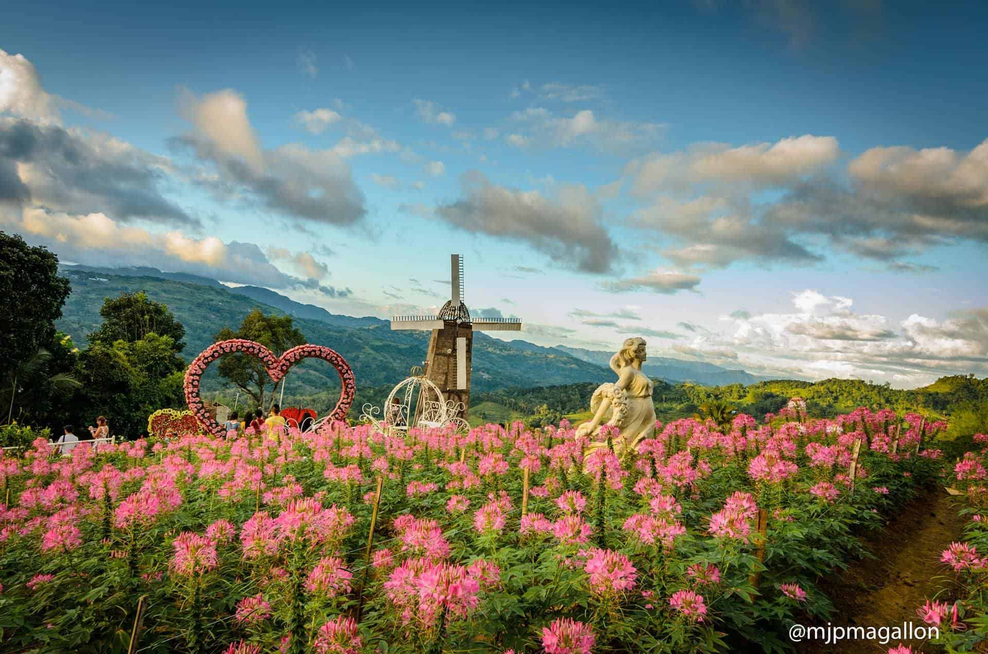 New Sirao Flower Garden Farm