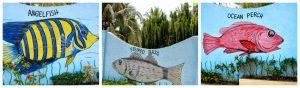jsjs-mountain-resort-fish