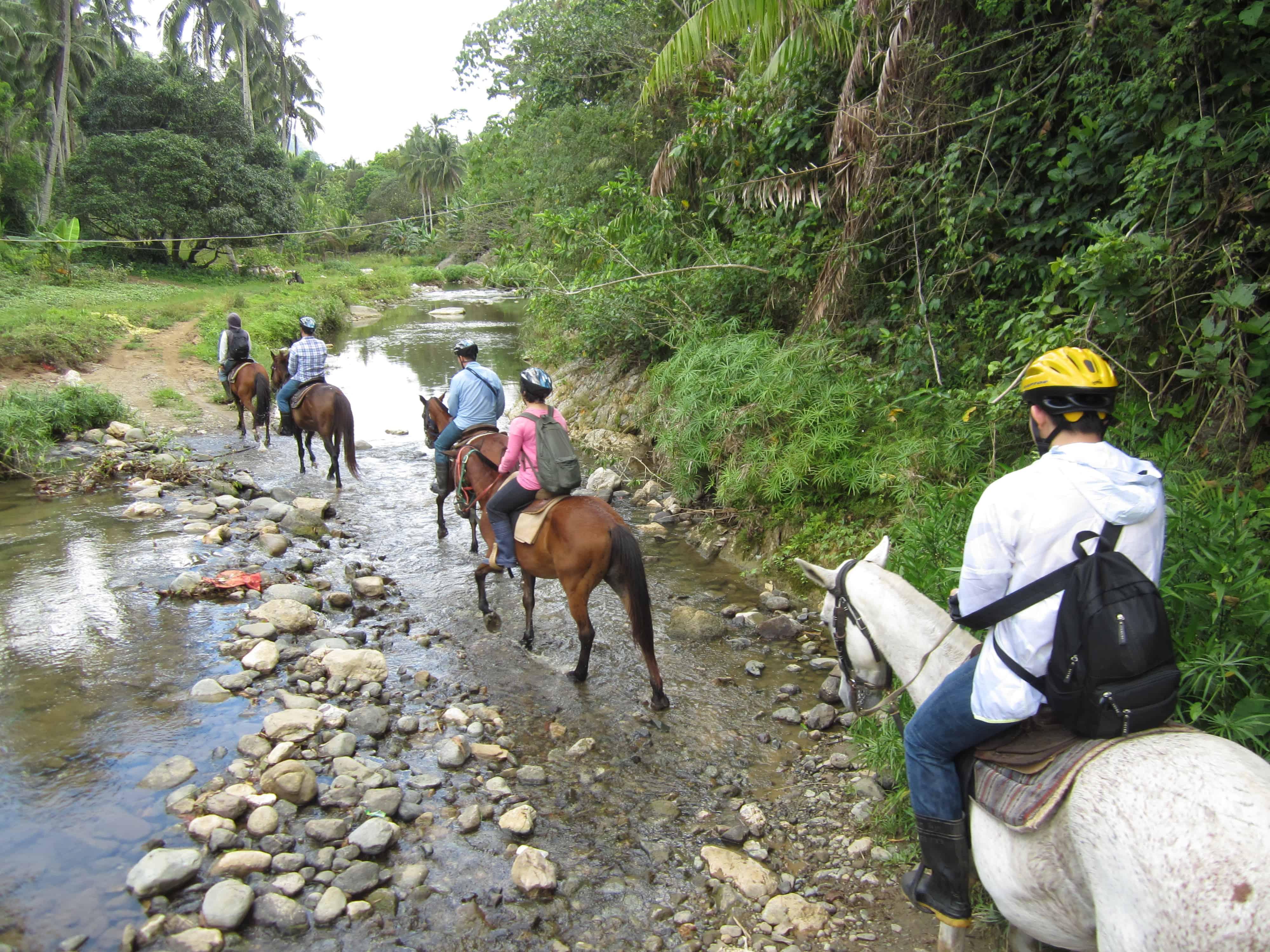 Big Q Farm Horseback Riding Cebu (9)