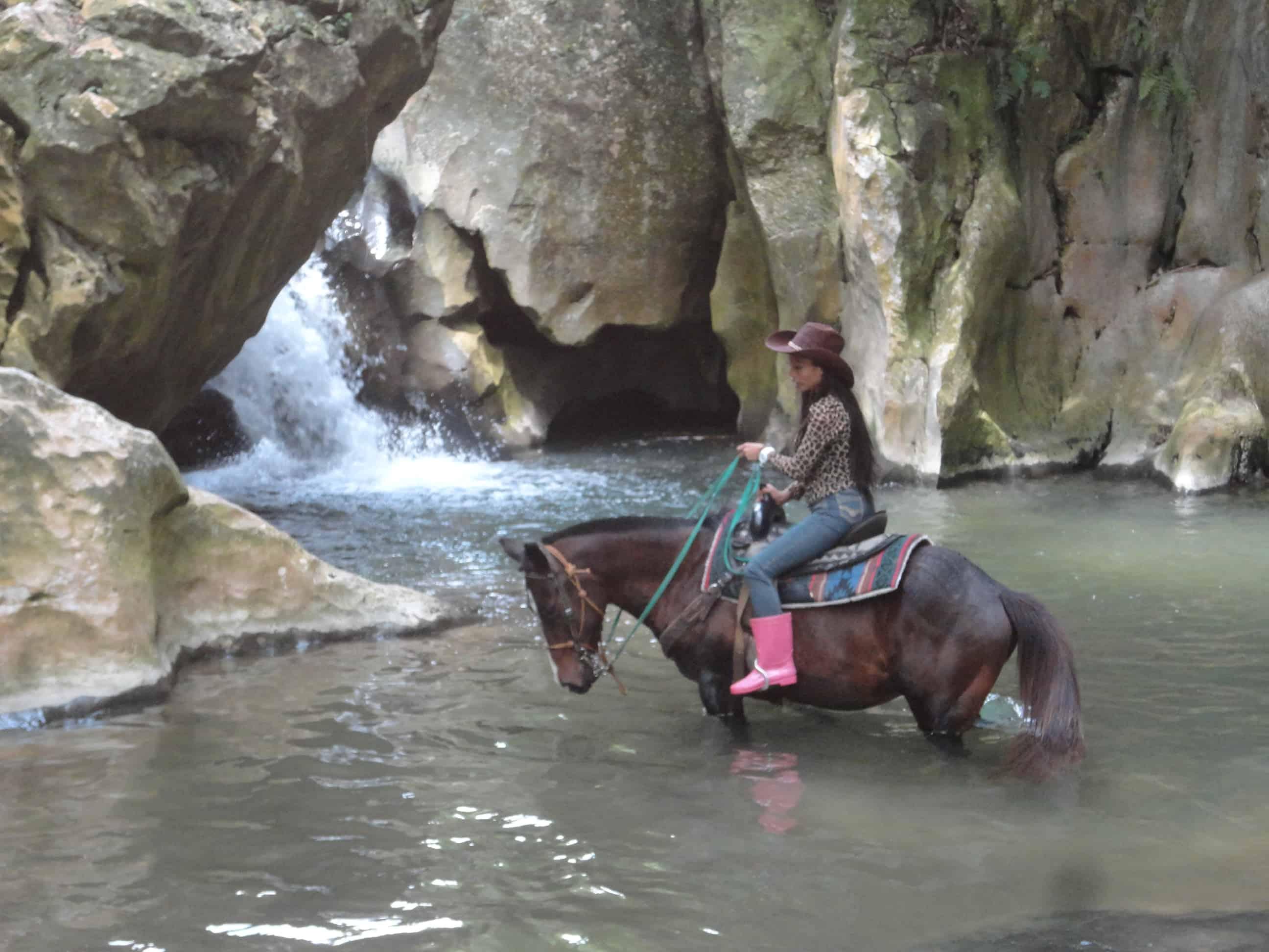 Big Q Farm Horseback Riding Cebu