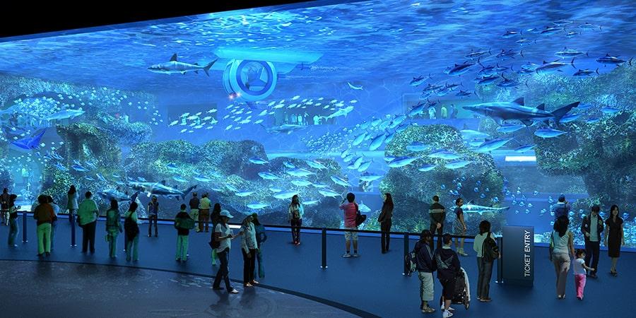 cebu-ocean-park-oceanarium3