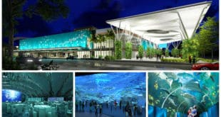 cebuoceanparkofficial