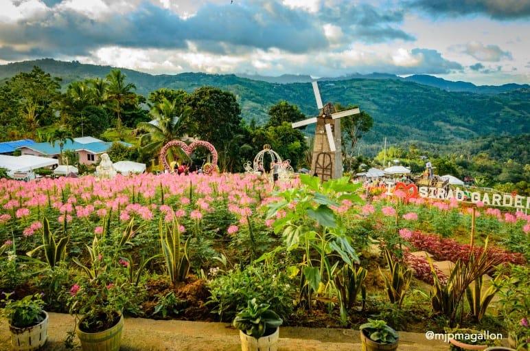 0 sirao flower garden