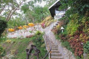 Busay Green Canopy Restobar Cebu (2)
