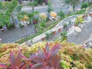 Busay Green Canopy Restobar Cebu (3)