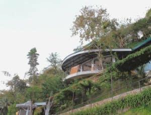 Busay Green Canopy Restobar Cebu (4)