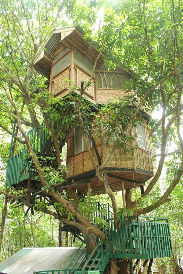 durano eco farm spring resort carmen cebu (3)