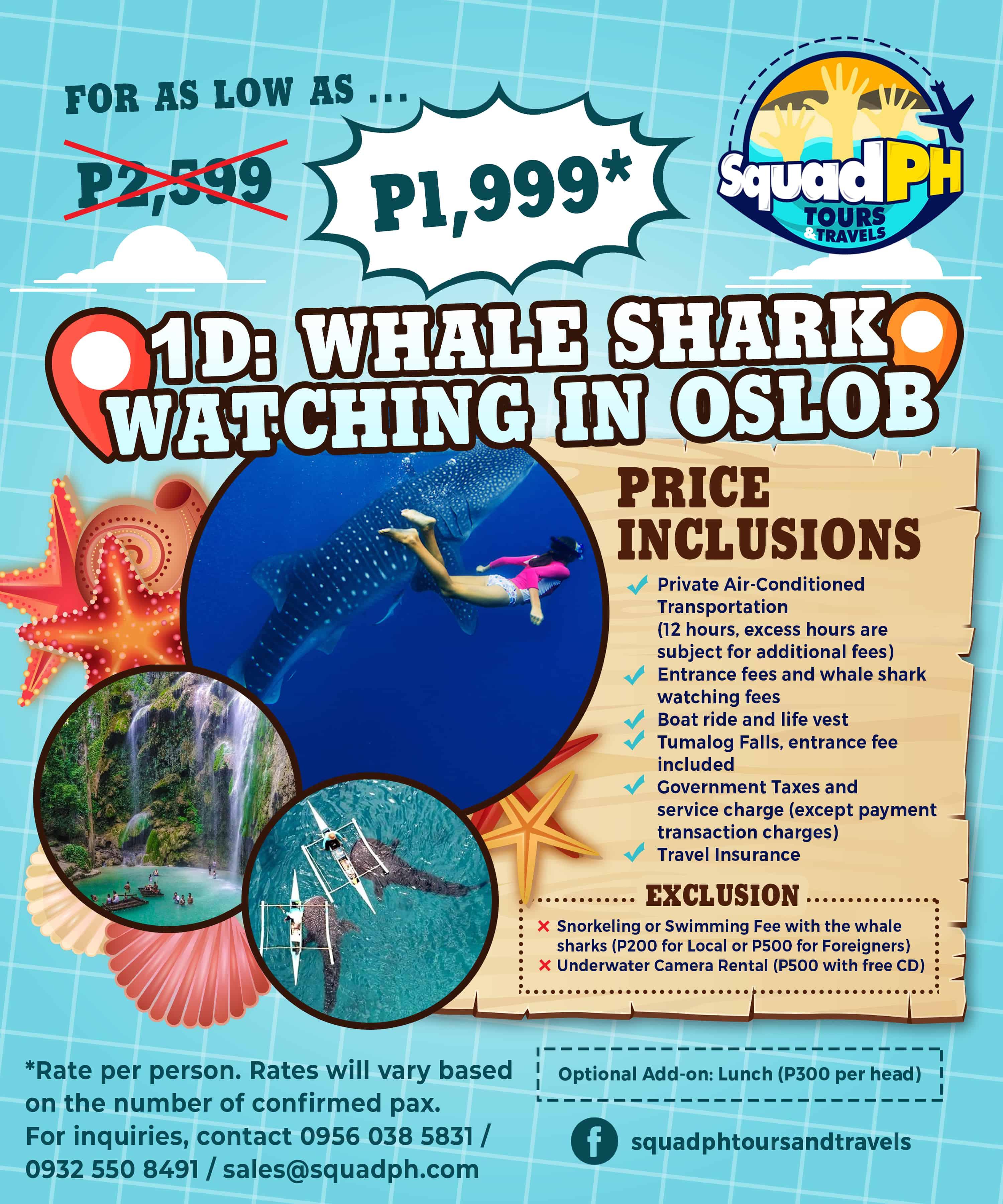 oslob whale shark tour package cebu
