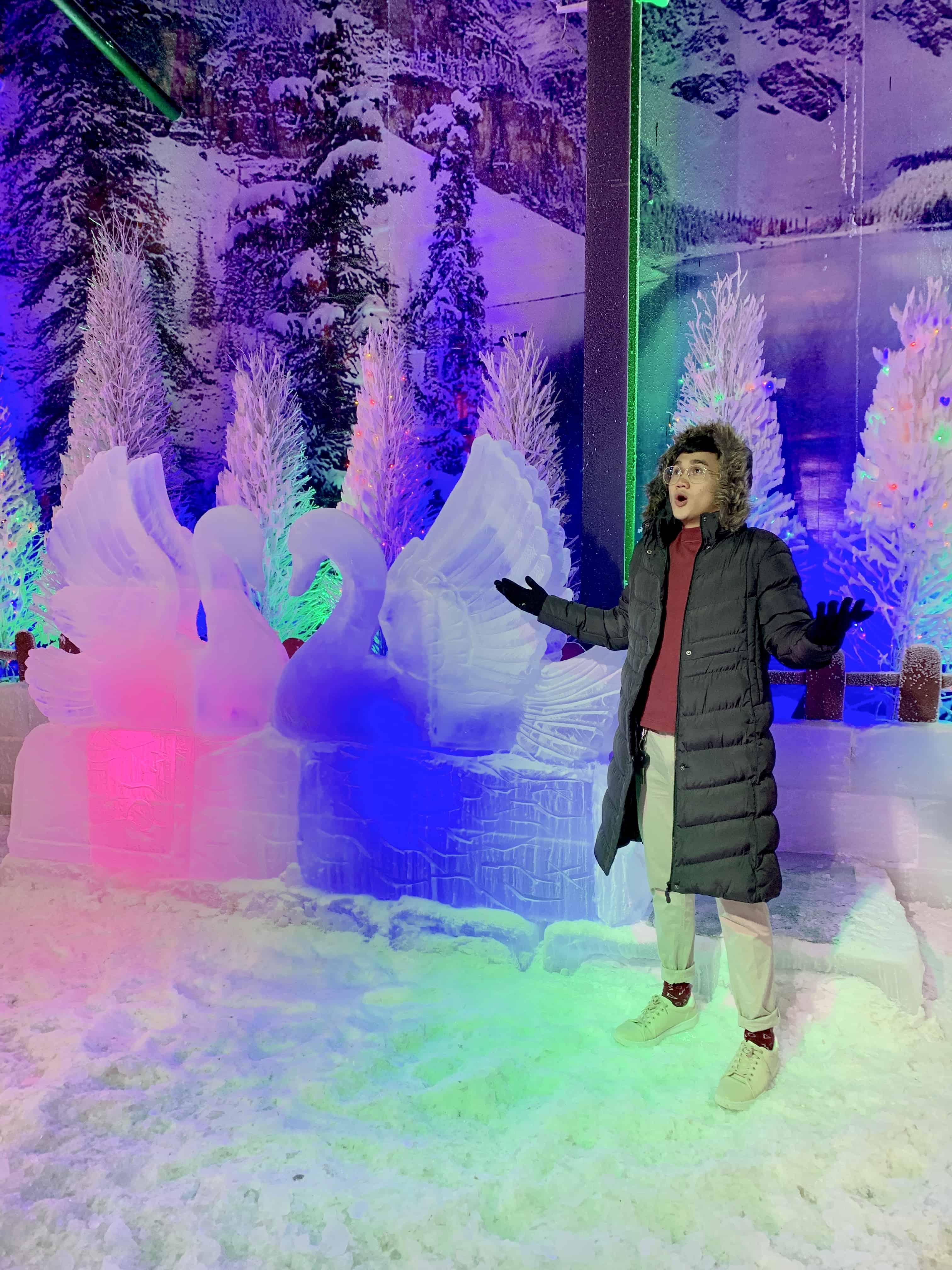 Snow World Cebu Actual Photos (7)
