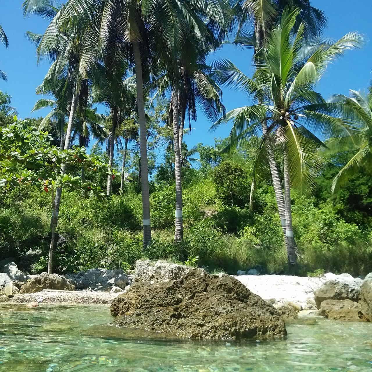 Badiang Gamay Beach Tabogon Cebu (8)