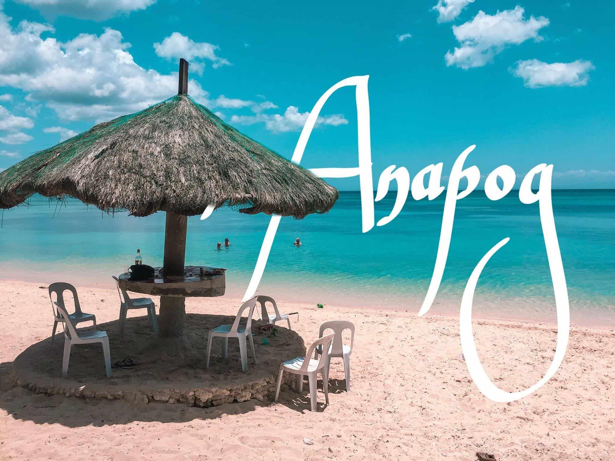 Orongan Beach Resort Anapog San Remigio (1)