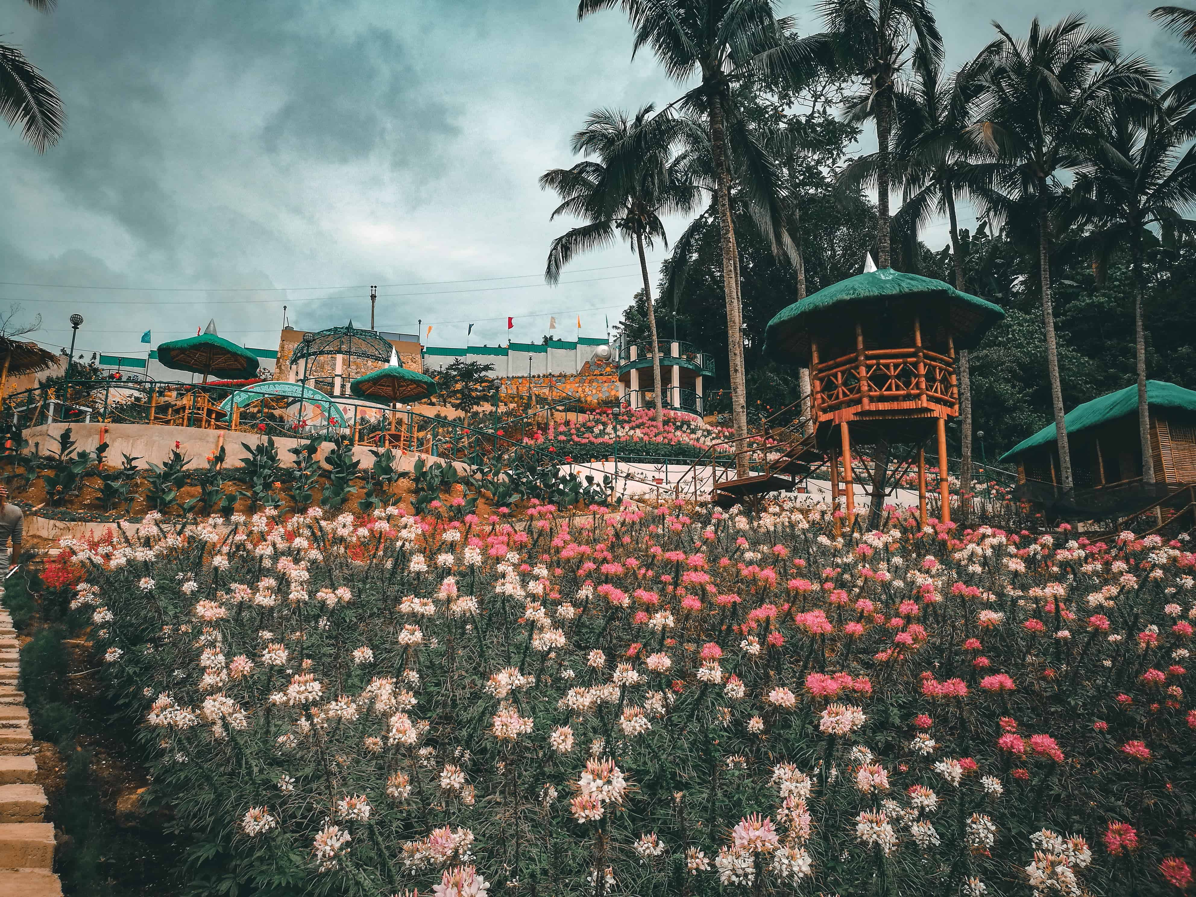 MSDEA Ornamental Garden Cebu City (1)