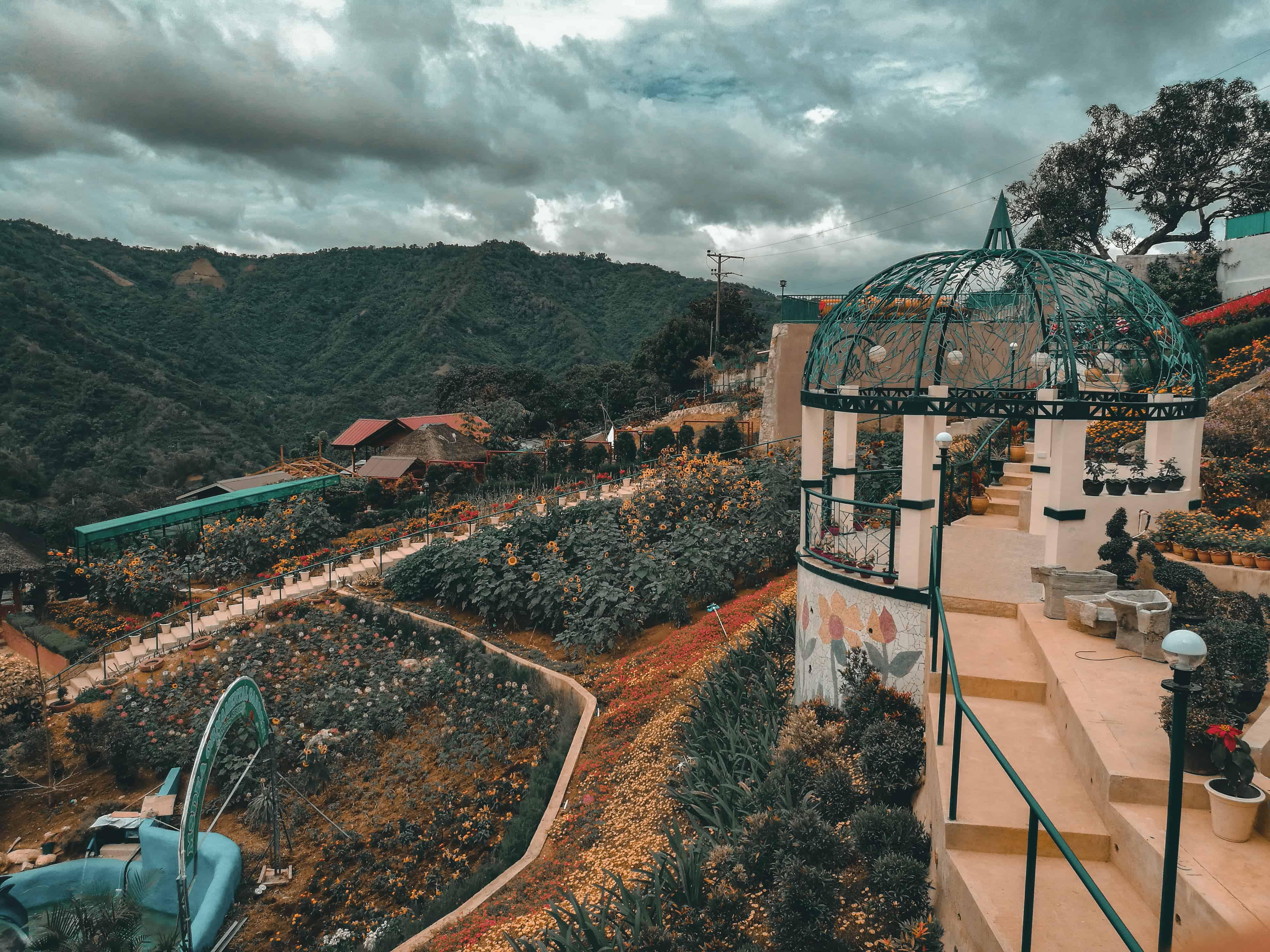 MSDEA Ornamental Garden Cebu City (2)
