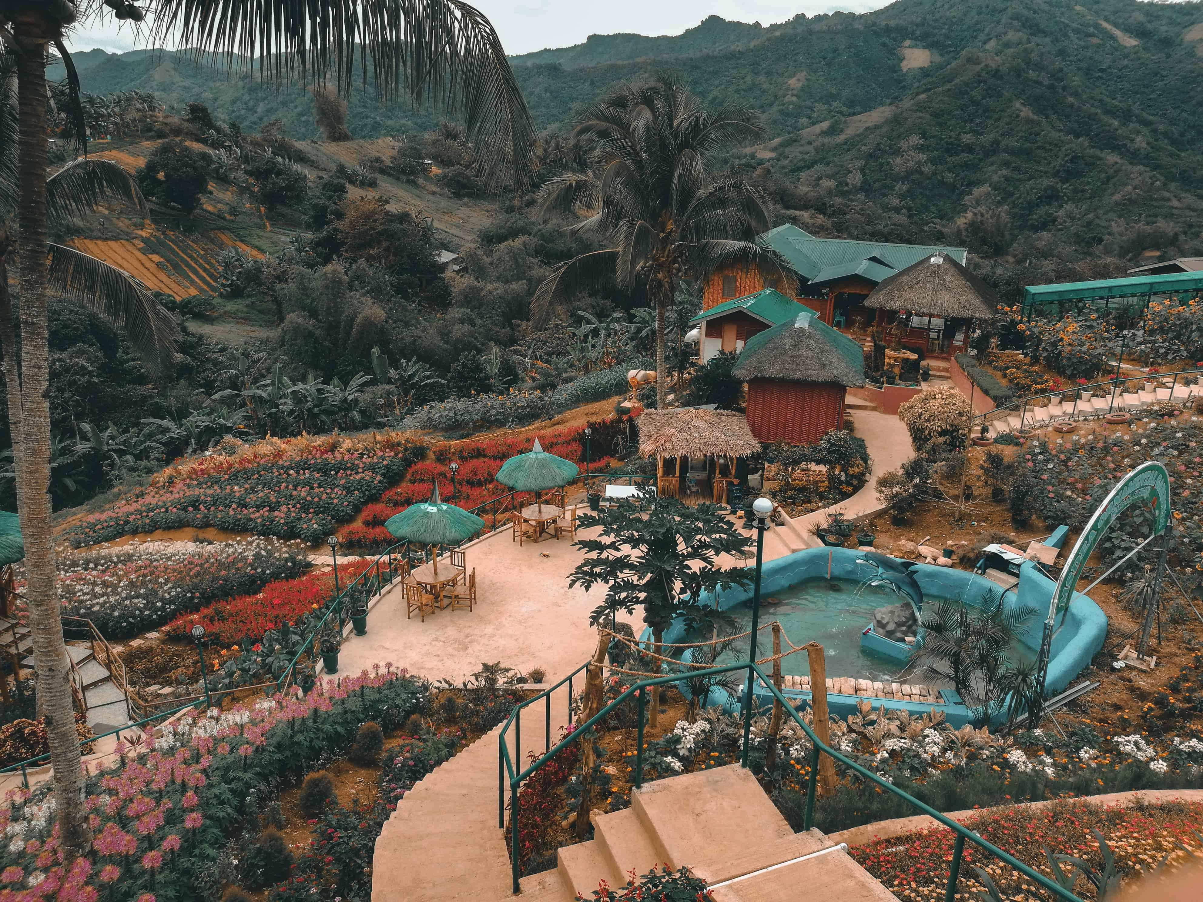 MSDEA Ornamental Garden Cebu City (6)