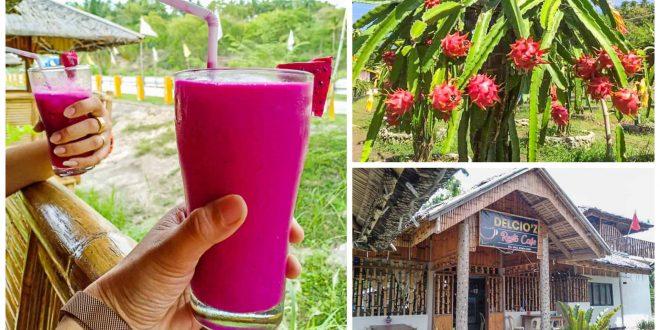 1delciozrestocafe-dragonfruit-cebu