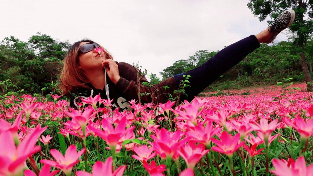 Pink Aseret Flowers Oslob Cebu (1)