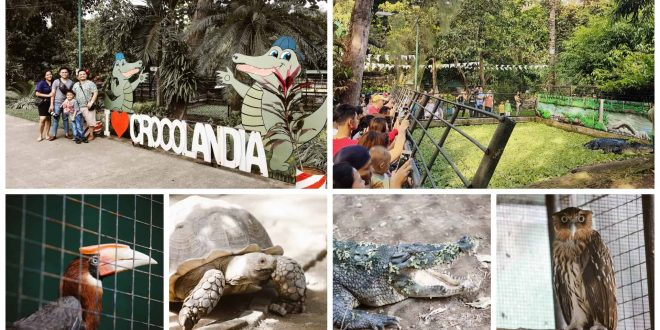 Crocolandia Park Talisay Cebu City