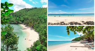2Hermit's Cove Aloguinsan Cebu