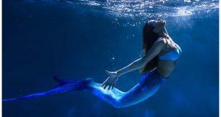 Cebu Ocean Park Hiring Mermaids 2020