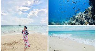 1Caohagan Island Mactan Cebu Island Hopping