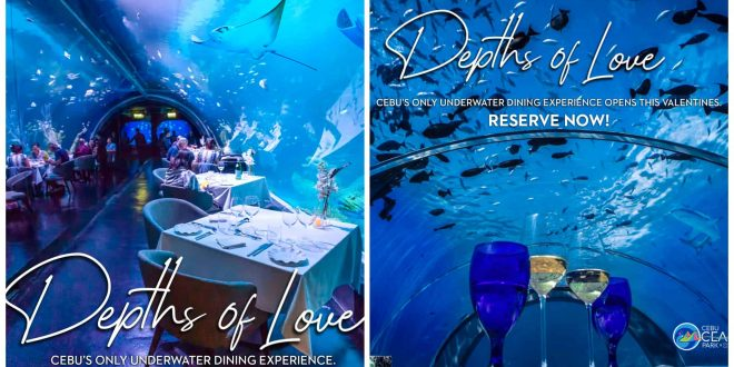 1Cebu Ocean Park Depths of Love1