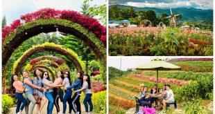 1flower-gardens-cebu