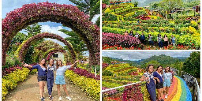 3buwakan ni alejandra garden cebu