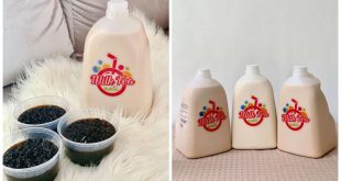 1Milk Tea in a Gallon Cebu Delivery