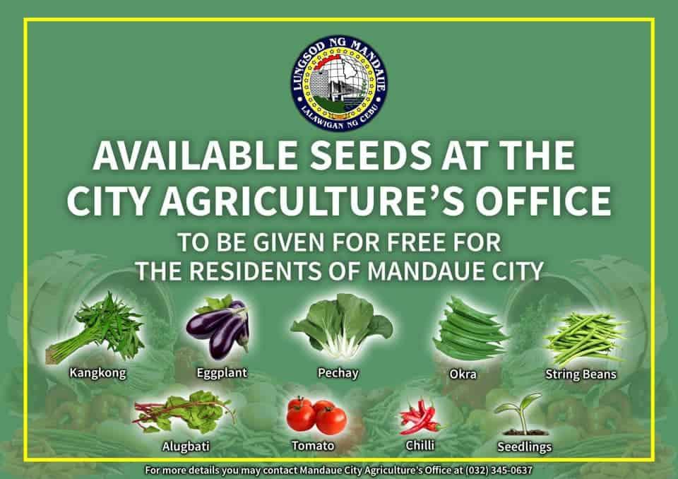 Mandaue-City-Free-Vegetable-Seeds-2