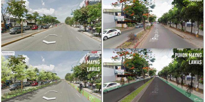 1 Cycling Network proposal in Cebu City