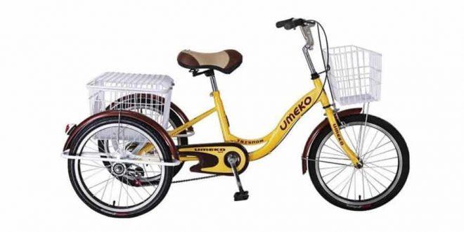 three wheeled bicycle cebu