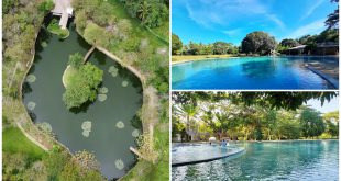 1 Cascades Nature Park Compostela Cebu