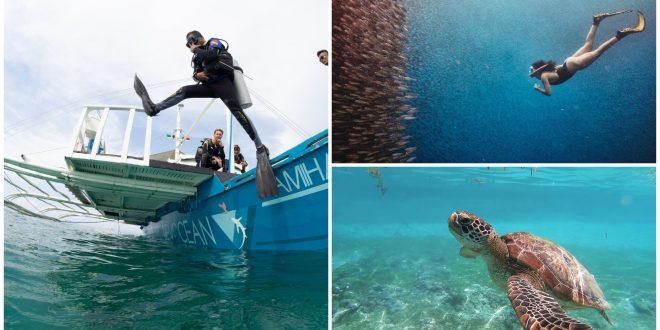 1 diving spots cebu