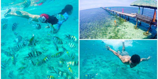 1 marine sanctuaries in cebu