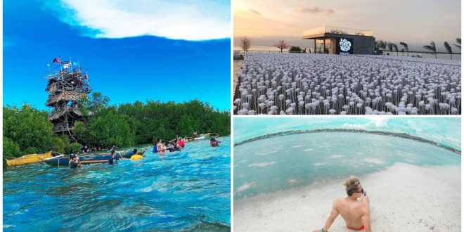 1 attractions in cordova cebu