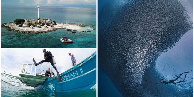 1 best diving sites in cebu