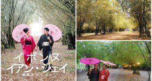 1 Bamboo Forest Medellin Cebu Asian Drama