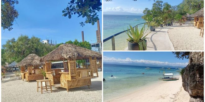 1 Qm Diving Resort Moalboal Cebu