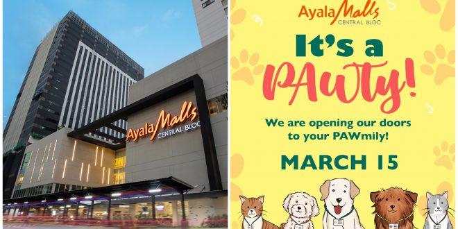 1 ayalamalls central bloc it park pet friendly